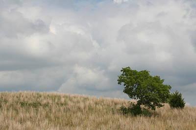 Photograph - Zumbro Hillside by Dylan Punke