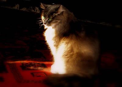 Zusje Sunbathing In The Light Art Print by Martin Morehead