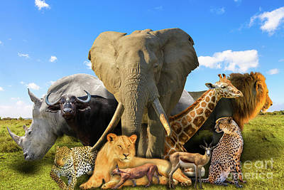 Photograph - African Animals Collage by Benny Marty