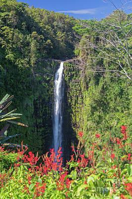 Photograph - Akaka Falls by Jim West