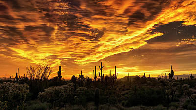 Photograph - Amazing Arizona  by Saija Lehtonen