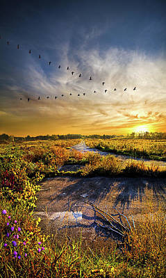 Art Print featuring the photograph An Old Road by Phil Koch