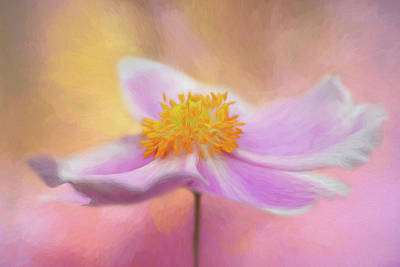 Digital Art - Anemone by Cyndy Doty