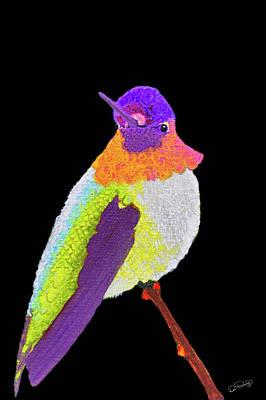 Photograph - Anna's Hummingbird I by Dee Browning