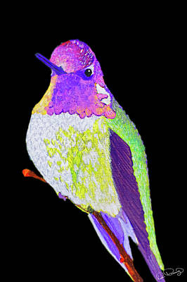 Photograph - Anna's Hummingbird II by Dee Browning