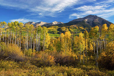 Photograph - Aspens Of Kebler Pass by John De Bord