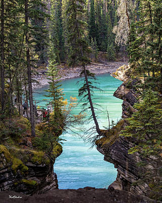 Photograph - Athabasca Falls by Tim Kathka