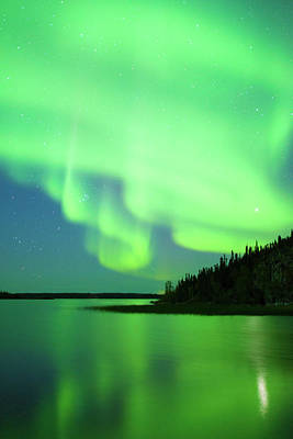 Photograph - Aurora Borealis, Northern Lights by Wayne Lynch