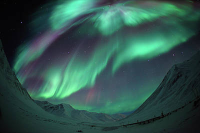 Photograph - Aurora Borealis by Piriya Photography