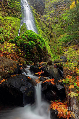Photograph - Autumn Cascades by Mike Dawson