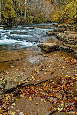 Photograph - Autumn Cherry Falls Elk River by Thomas R Fletcher