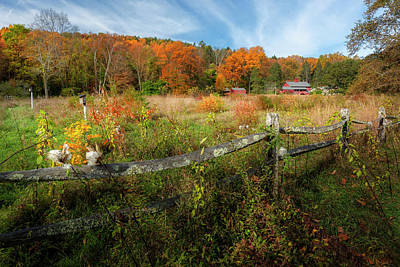 Photograph - Autumn Country by Bill Wakeley