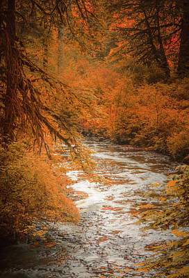 Photograph - Autumn Creek by Don Schwartz
