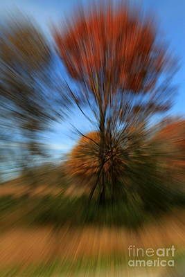 Photograph - Autumn Explosion #2 by Rick Rauzi