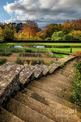 Photograph - Autumn Garden by Adrian Evans