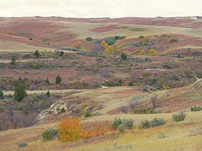 Photograph - Autumn Grassland Glory by Cris Fulton