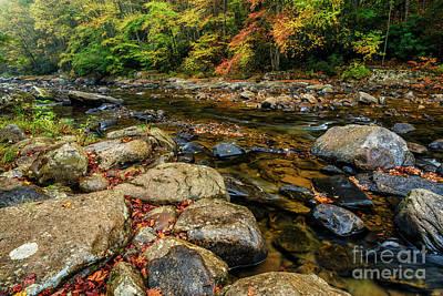 Photograph - Autumn Rain Along Williams River by Thomas R Fletcher