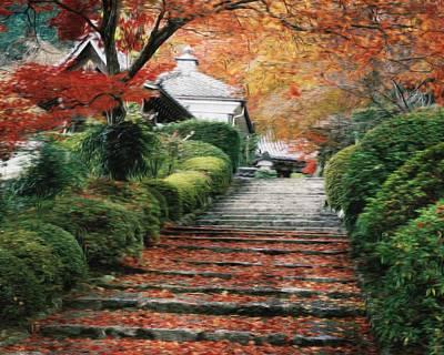 Photograph - Autumn Stairs by Dawn Van Doorn