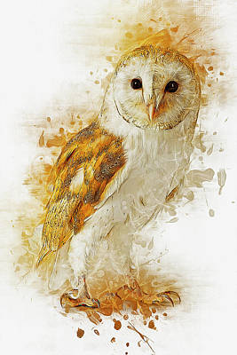 Digital Art - Barn Owl by Ian Mitchell