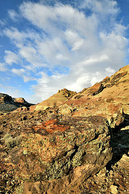 Photograph - Beautiful Colors Of Ruby Mountain by Ray Mathis