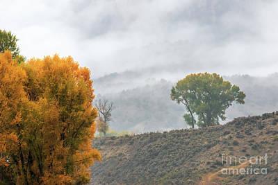 Photograph - Behind The Veil by Jim Garrison