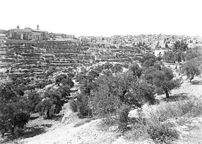 Photograph - Bethlehem 1886 by Munir Alawi