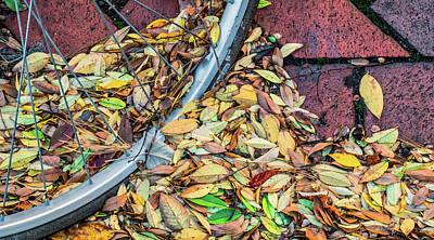 Photograph - Bicycle Wheel Stuck N Autumn by Gary Slawsky