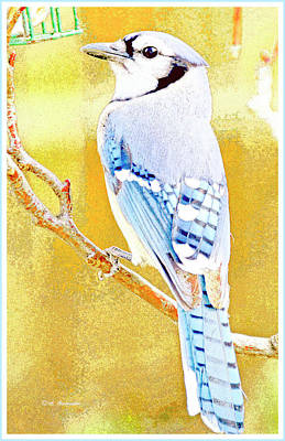 Digital Art - Blue Jay, Animal Portrait by A Gurmankin