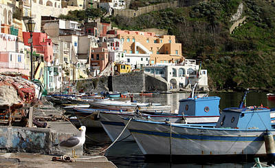 All You Need Is Love - Boats of Procida by Jonathan Thompson