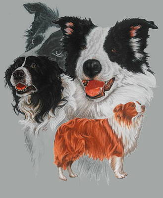 Mixed Media - Border Collie Revamp by Barbara Keith