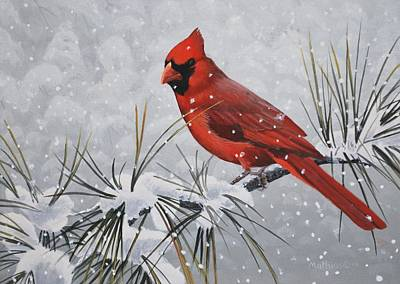 Painting - Cardinal In The Snow by Peter Mathios