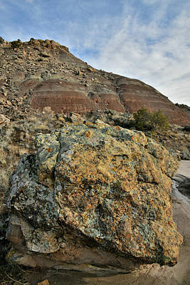 Photograph - Colorful Boulder In Ruby Mountain Wash by Ray Mathis