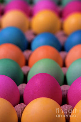 Owls - Colorful Easter Eggs by Jim Corwin