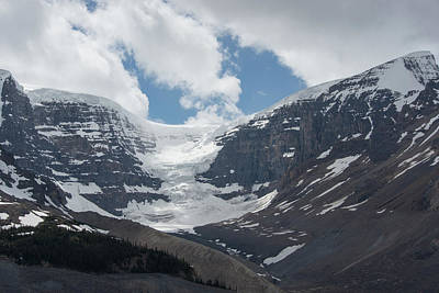 Purely Purple - Columbia Icefields by Carol Ailles