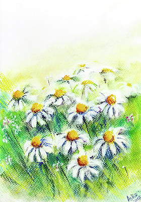 Drawing - Daisies by Asha Sudhaker Shenoy