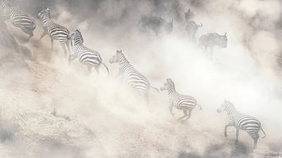 Photograph - Dramatic Dusty Great Migration In Kenya by Susan Schmitz