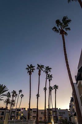 Photograph - Early Morning With Sunrise At Hotel And Palm Trees by Alex Grichenko