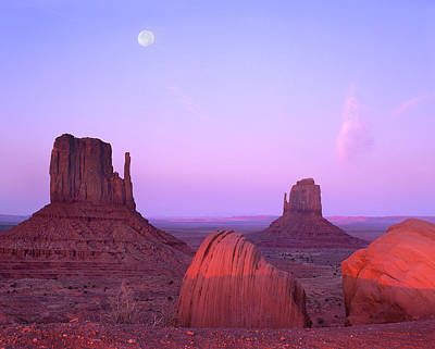Photograph - East And West Mittens, Buttes At by Tim Fitzharris/ Minden Pictures