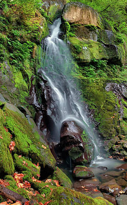 Photograph - Elk Creek Falls by Leland D Howard