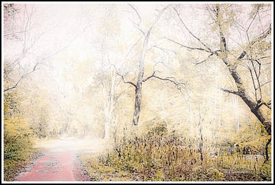 Photograph - Enchanted Forest, Fantasy Scenic by A Gurmankin