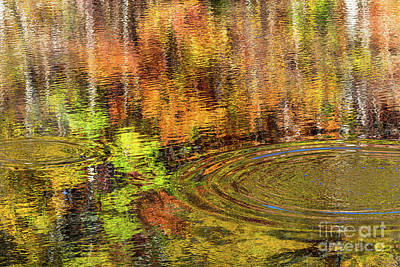 Design Turnpike Vintage Maps - Fall Reflections by Bernd Laeschke