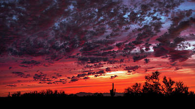 Photograph - Fiery Desert Skies  by Saija Lehtonen