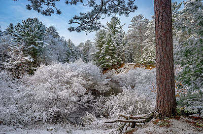 Photograph - First Snow by Gary McCormick