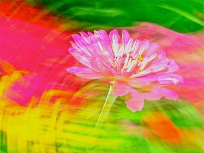 Photograph - Flower Abstract by Jeffrey PERKINS