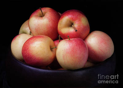 Photograph - Gala Apples by Ann Jacobson
