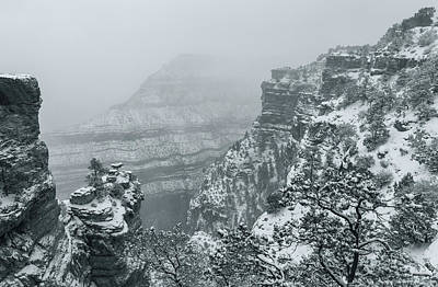 Photograph - Grand Canyon Bw by Jonathan Nguyen