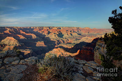 Photograph - Grand Canyon National Park Spring Sunset by Wayne Moran