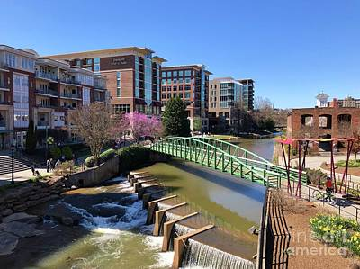Photograph - Greenville by Flavia Westerwelle
