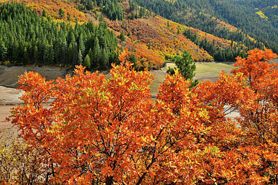Photograph - Highway 133 Fall Colors by Ray Mathis