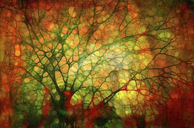 Digital Art - Illuminated by Tara Turner